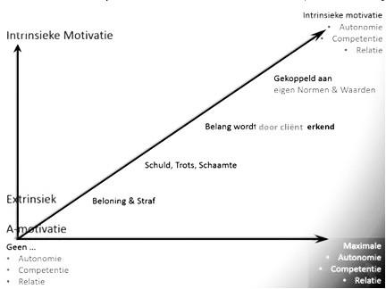 Intrinsieke motivatie en gedragsverandering bij chronische pijn